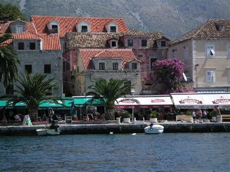 Old town   Picture of Villa Andro, Cavtat   TripAdvisor