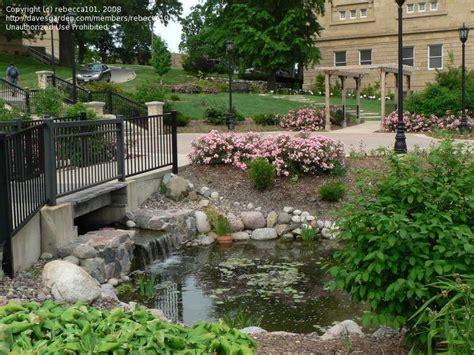 Uw Botanic Gardens Photo Of Uw Botanical Garden