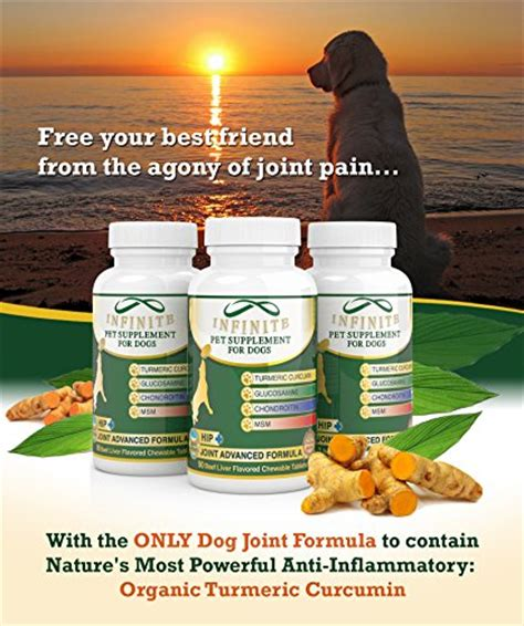extend for dogs supplement extend joint strength organic turmeric anti inflammatory ebay