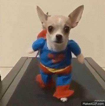 imagenes gif en whatsapp superman al rescate gifsgamers com la mejor web