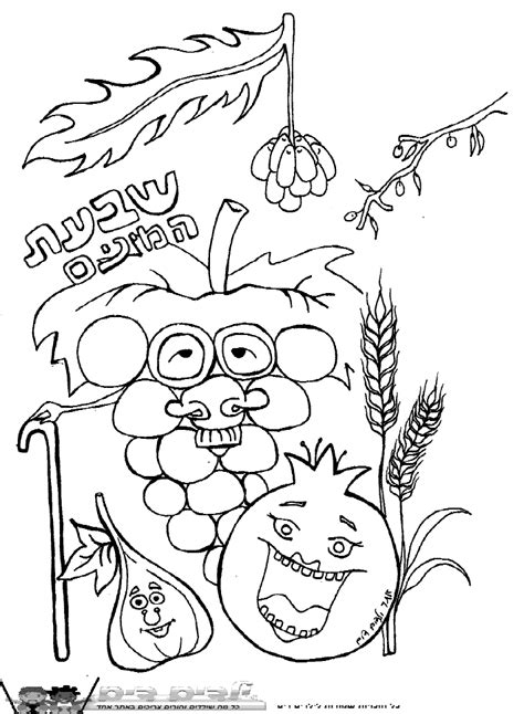 Tu B Shvat Coloring Pages tu b shvat coloring pages coloring home