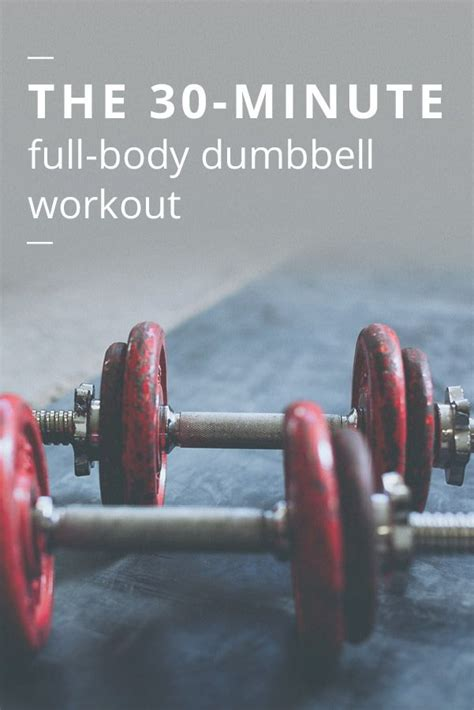 full body dumbbell workout no bench best 25 dumbbell workout ideas on pinterest workout