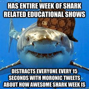 Funny Shark Memes - here come the shark week memes
