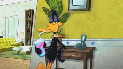 The Looney Tunes Show The Shelf by Talk The Shelf The Looney Tunes Show Wiki Fandom
