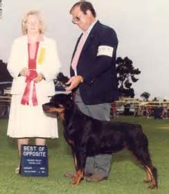 rottweiler health foundation the past of neu rodes