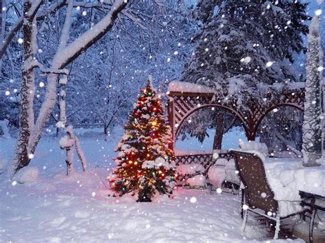 imagenes invierno nieve fondos de pantalla estaciones del a 241 o invierno nieve