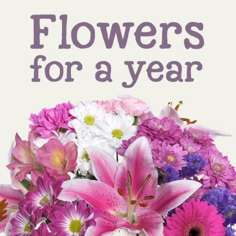 cheap new year flowers cheap roses delivered cheap flowers