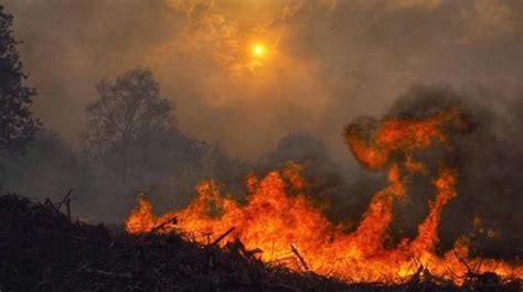ngeles en llamas 8417041427 una ola de incendios intencionados y virulentos arrasa galicia en 12 horas