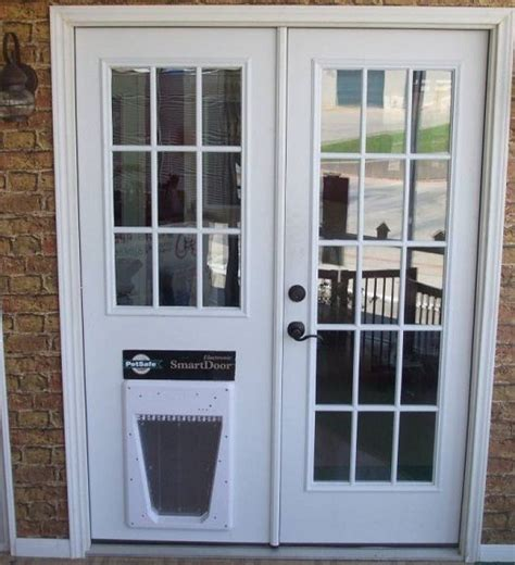 replace glass in door replace sliding glass door with door in the doghouse