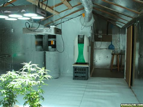 Grow Room by Pointers For Growing Marijuana Without Getting