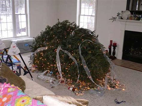 fallen christmas tree reader holiday disasters