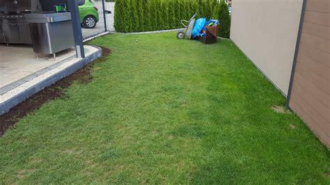 Neugestaltung Garten by Rasen Ausbessern Rasen Nachs En Rasenpflege Rasen