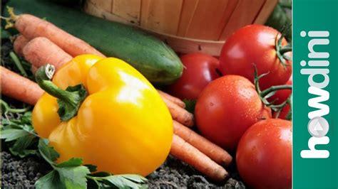 Diskon Veggie Grower As Seen On Tv Vegetable Planter organic gardening how to grow an organic vegetable garden