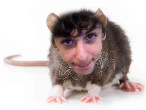 Rat Rug by Faze Rug Rugsfaceonstuff