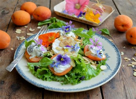 10 diy edible flower food recipes for summer shelterness 10 fragrant edible flower recipes food lists reader s