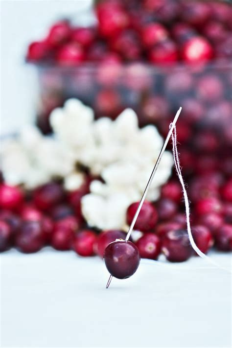 holiday decorating with cranberries