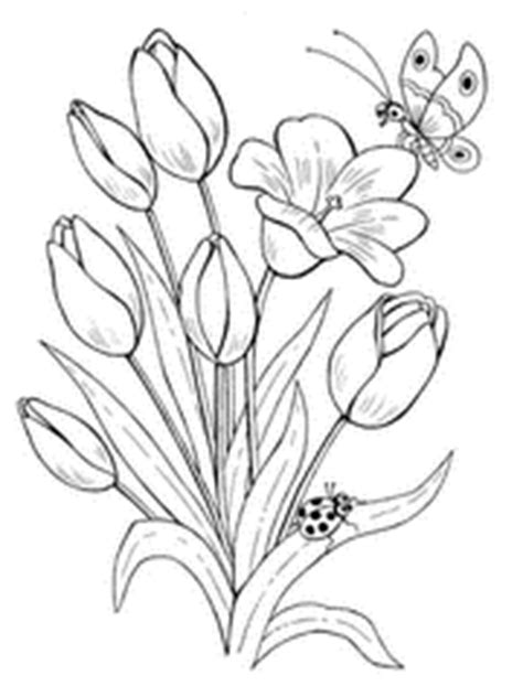 coloring pictures of butterflies and ladybugs printable butterfly coloring pages