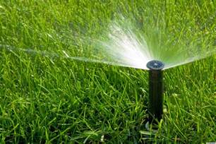 how to water your lawn the right way according to hgtv s