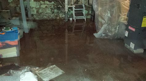 basement flooding clean up water damage boston call now 617 279 2448 vioclean