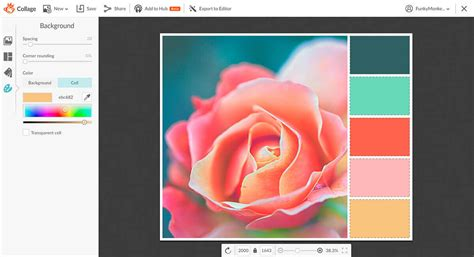 how to make a custom color palette picmonkey