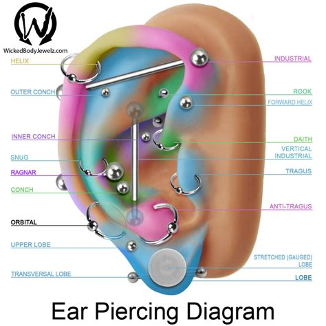 ear tattoo pain level tragus antitragus conch inner upper outer daith