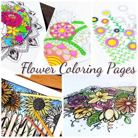 pages and crafts 5 free flower coloring pages for adults crafts
