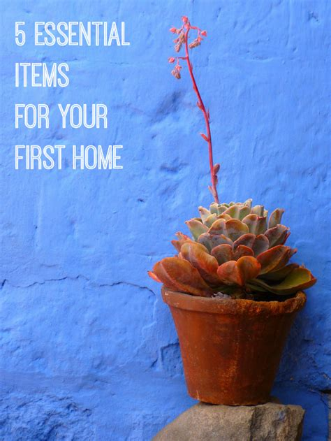 essentials for your first house five essential items for your first home love chic living
