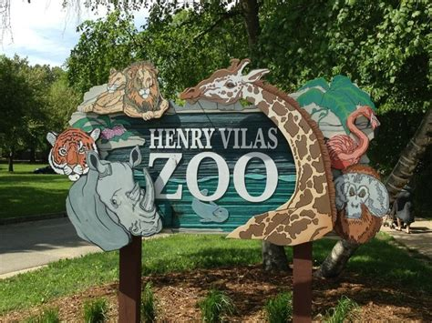 henry vilas zoo christmas lights 116 best my favorite things images on pinterest fox