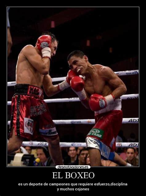 imagenes motivacionales de boxeo el boxeo desmotivaciones