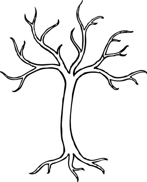 Clip Tree Outline by Winter Tree Clip At Clker Vector Clip Royalty Free Domain