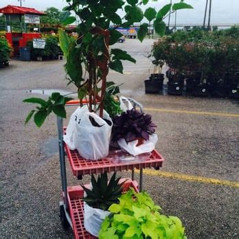 Houston Garden Center Phone Number by Houston Garden Centers Discount Store 13403 South Fwy