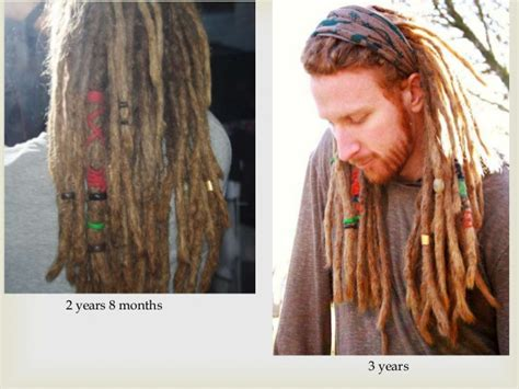 how to section hair for dreads dreadlock info for non african hair