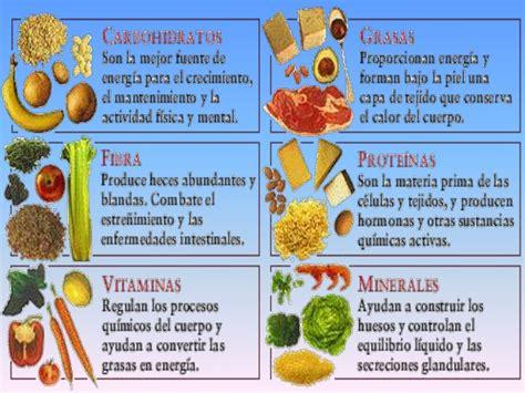 proteinas y minerales nutrici 243 n y alimentaci 243 n en la primera infancia por