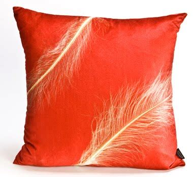Best Feather Pillows by Ostrich Feather Pillow August 2011