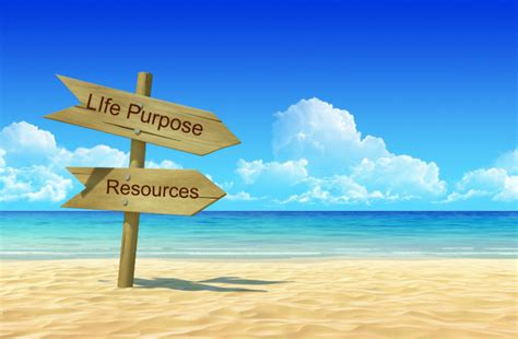 biography purpose 6 action steps to discover your purpose rachael cbell