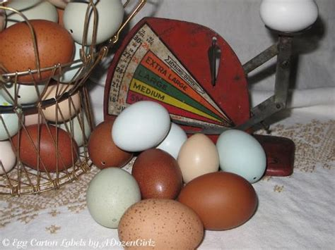 Blown Eggs Decorating Ideas by Egg Blowing 101 And Egg Decorating