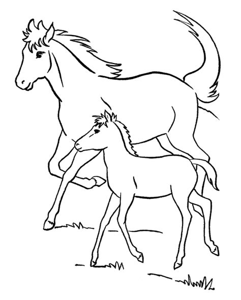 coloring pages of horses and foals foal coloring pages az coloring pages