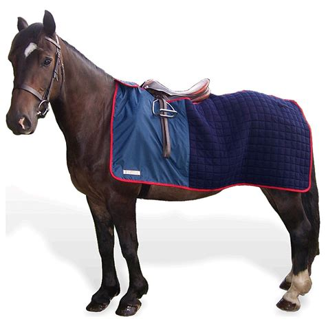 Workout Rug thermatex nordic exercise rug