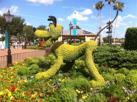 Epcot International Flower Garden Festival News Doverwood Communications