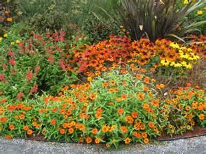 Gardening In August Berkshire Botanical Garden Level Ii Certificate