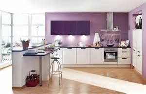 Merveilleux Repeindre Une Cuisine En Bois #3: idée-très-jolie-couleur-peinture-cuisine-lilas-meubles-buisine-blancs-décor-fantastique.jpg