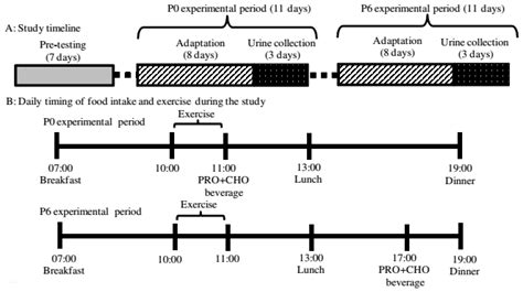 experimental design exercise protein timing does matter yet only in trained men more