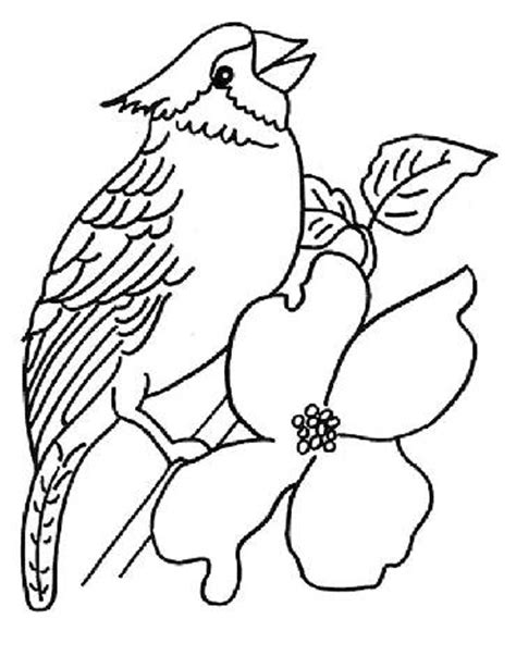 preschool coloring pages of birds preschool birds coloring pages
