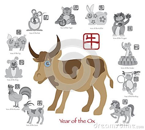 new year ox animal new year ox color with twelve zodiacs vector