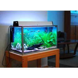 aquarium design kolkata aquarium fish tank stand sale in mumbai plexiglass fish