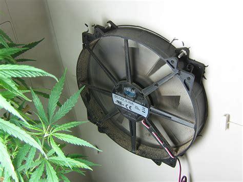 marijuana growers hq the 100 grow cabinet