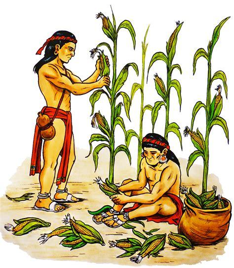 imagenes agricultura maya segundalotiparvulos los mayas y su agricultura nogelosa