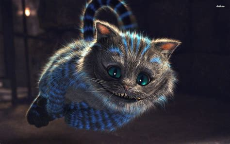 cheshire cat cheshire cat wallpapers wallpaper cave