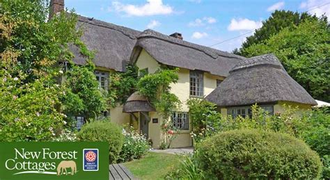 new forest cottages special offers uk family