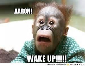 Aaron Meme - aaron cheeky chimp meme generator captionator
